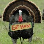 'Eat Ham' Turkey